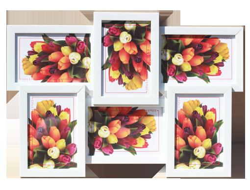 мульти 1611-14 на 6 фото 10х15 цена 7.5 у.е. (2)
